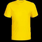 Áo cổ tròn màu vàng ( thân trước)
